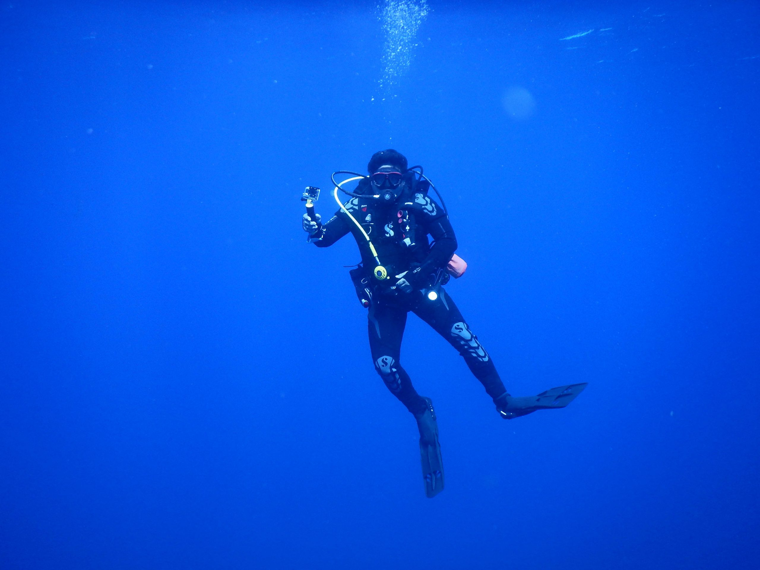 Dive Gordo Banks meet the hammerheads